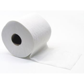 Toaletný papier 2-vrstvový, priemer 10,5 cm, 29 m, 80 % bielosť, recykl. 64 ks/bal.